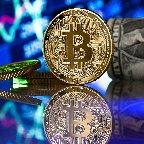 ビットコイン、機関投資家・企業の保有加速=クラーケン・ジャパン代表